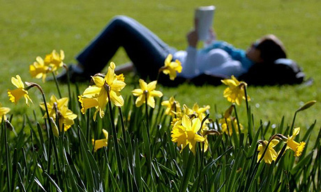 Reading book on grass photo