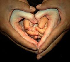 Heart of hands family